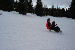 15.01.2009 Sportprojekt 8. Jahrgangsstufe Bewegen im Schnee